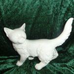 Katt i vitt porslin